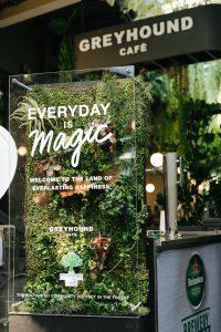 everyday-is-magic-1