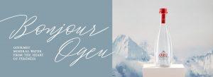 ogeu-web-banner